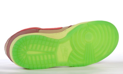 nike-sb-toxic-sea-robin-dunk-low-2